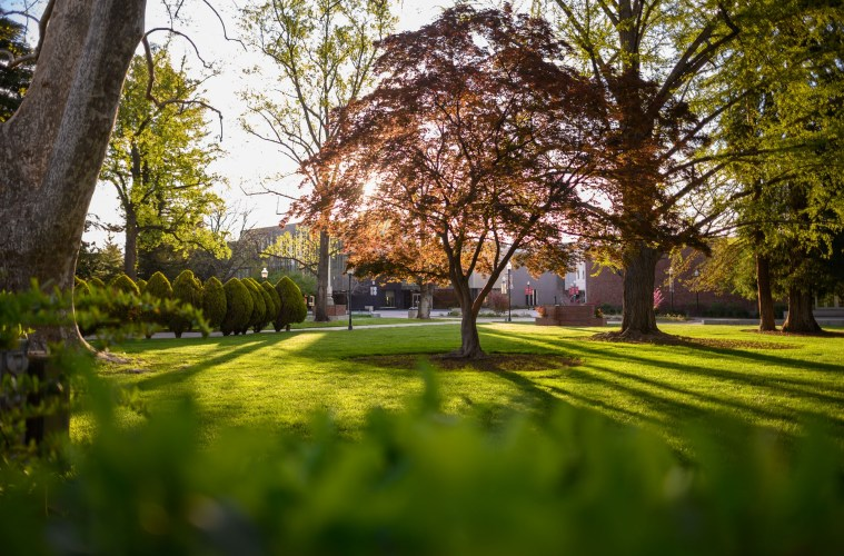 The sun shines through the trees on the Kendall Hall lawn.