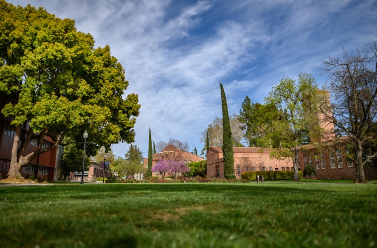 Grass, trees, and an academic building sit beneath a brilliant blue spring sky.