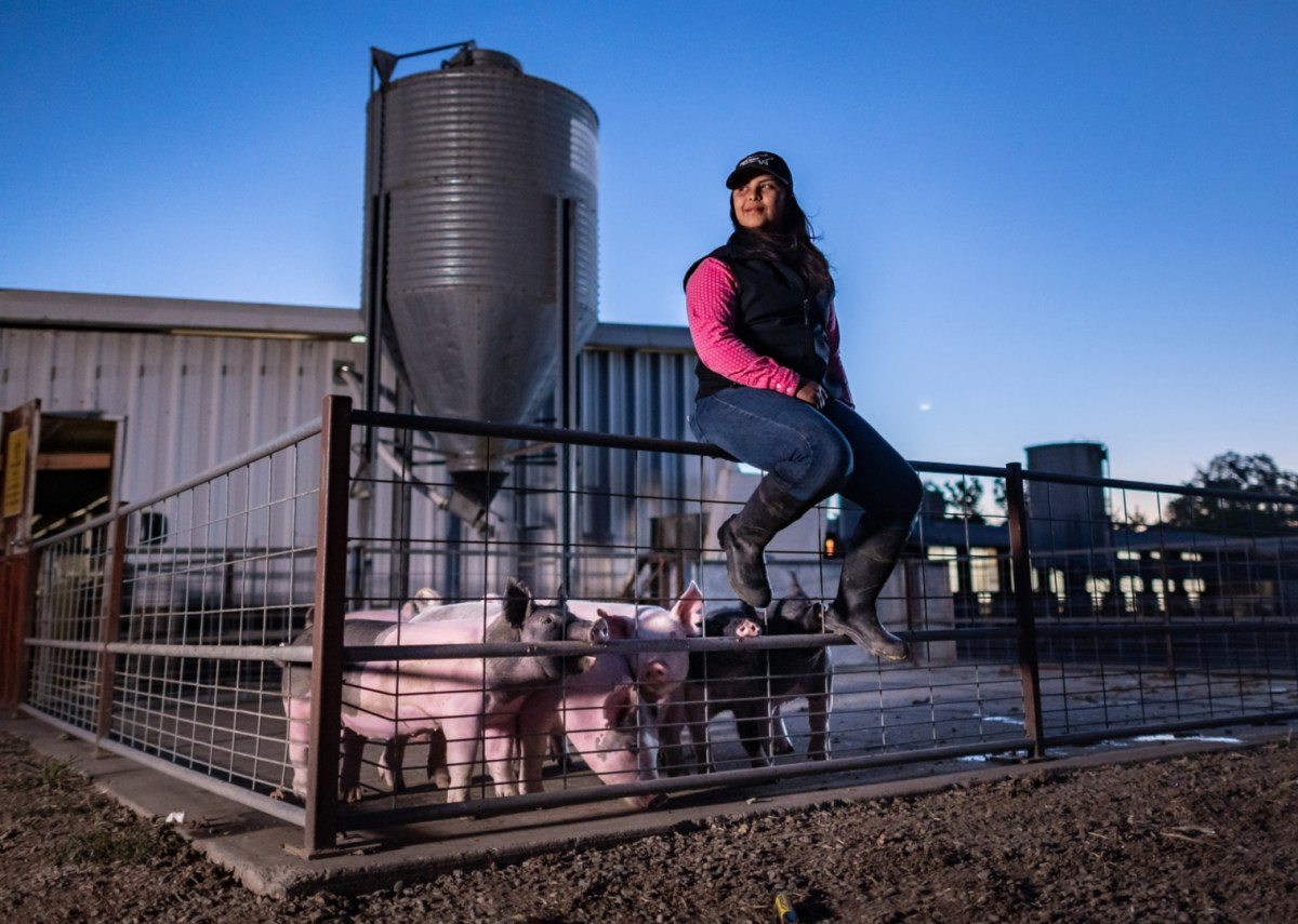 Annelise Perez gets up early to work on the farm.
