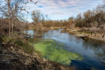 Water gently flows through the Sacramento River