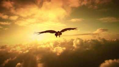 Open Heaven Prayer Points for 28 August 2021 Saturday
