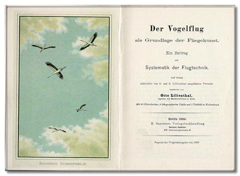 Bird Flight As The Basis Of Aviation