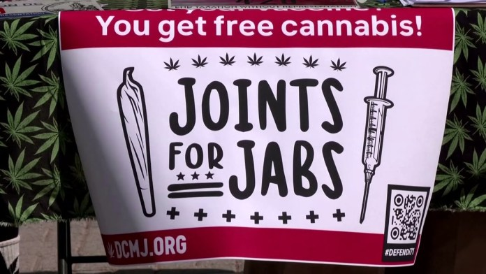 Washington to Offer Free Marijuana Joints to Ramp Up COVID-19 Vaccination Drive