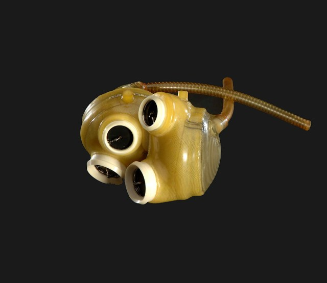 December 2: The First Successful Permanent Artificial Heart