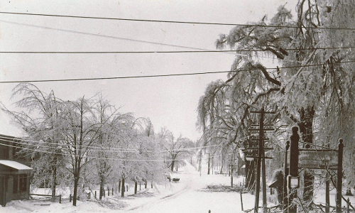 Greenwoods Road in Norwalk after the ice storm of February 1898. Photograph by Marie Kendall. (Connecticut Historical Society)