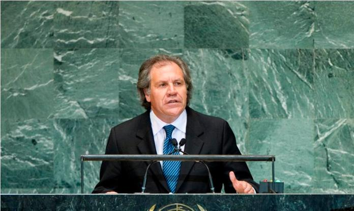 """Almagro: """"Cuban model"""" is exported to Nicaragua"""