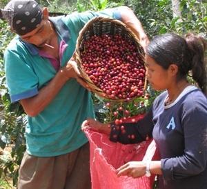 Nicaraguan Exports Increase