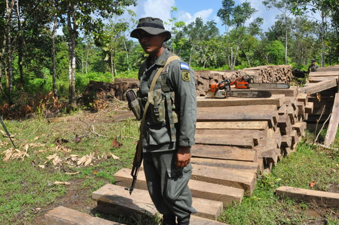 Safeguarding the environment: A member of the Nicaraguan Army's Ecological Battalion (BECO) guards illegal harvested timber that soldiers seized during a security operation. Since it was launched in 2012 BECO has confiscated millions of board feet of illegally harvested timber. [Photo: Nicaraguan Army]