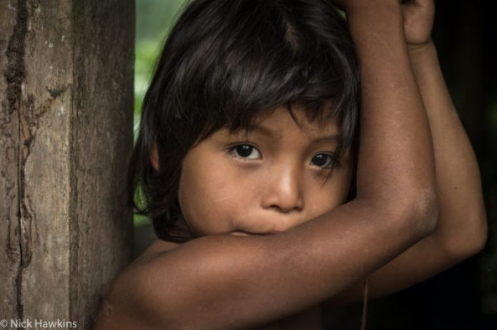 A young Rama boy in his home along the Indian river in the Indio-Maiz Biological Reserve of Nicaragua.