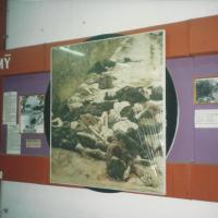 Mar-29: The Tragedy of Vietnam