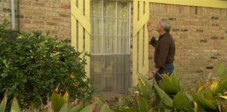 Danny Lipford with window