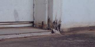 Rotten door casing and jamb caused by water damage.