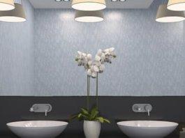 Dual bathroom sinks with multibulb overhead lighting.