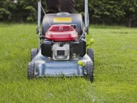 Mowing grass in lawn.