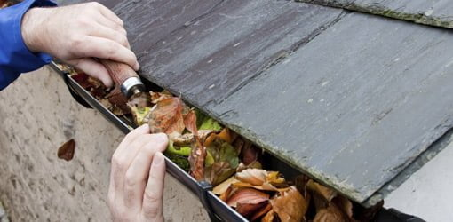 Cleaning out leaves in gutters.
