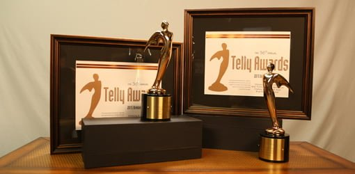 Checking in with Chelsea video web series Telly awards