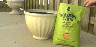 Nature's Care potting soil.