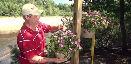 Allen Lyle hanging plants on hanging planter post.