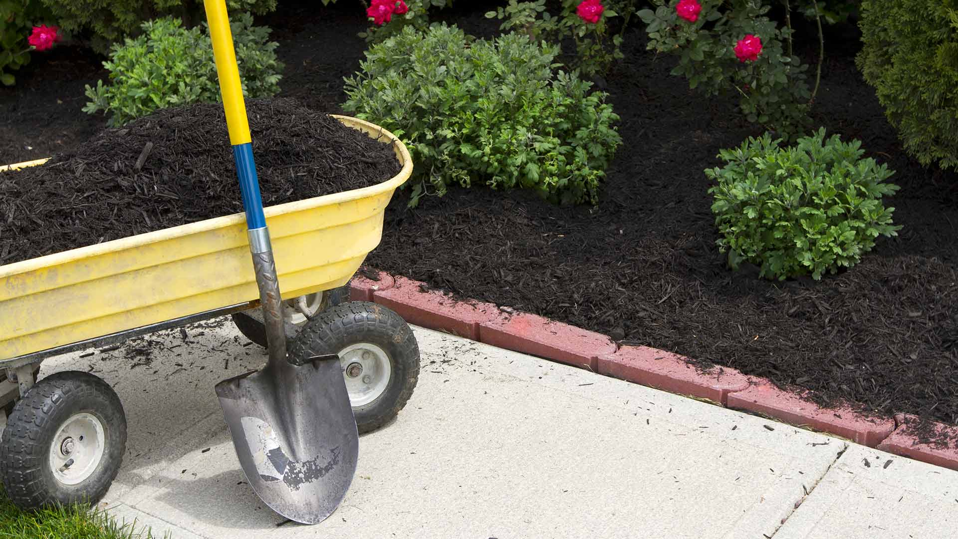 How To Plan A Low Maintenance Landscape You Ll Love