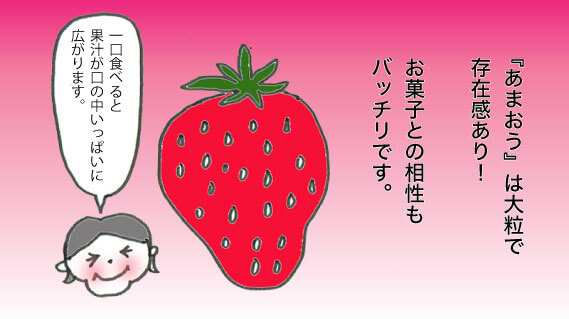 あまおう お菓子 博多駅