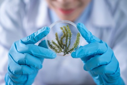 Biotech Skin Care: The Sustainable Beauty Trend