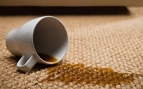 dealing-with-difficult-carpet-stains1