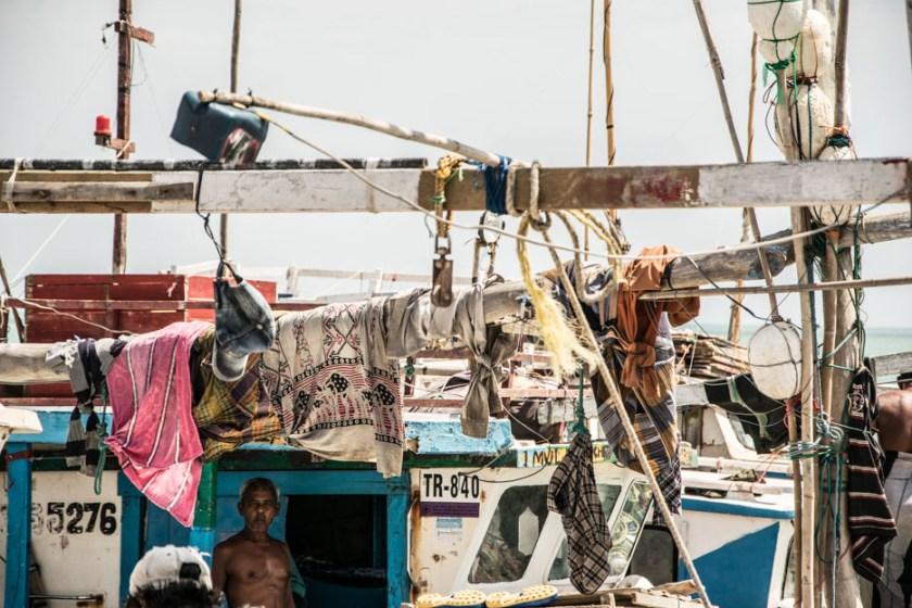 srilanka jaffna reisebericht-19