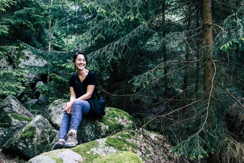 Harz Wald Fotospots