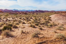 026 Valley of Fire