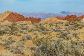 036 Valley of Fire
