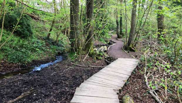 Rowhill Nature Reserve, Aldershot