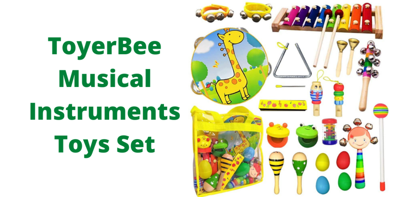 ToyerBee Musical Instruments Toys Set