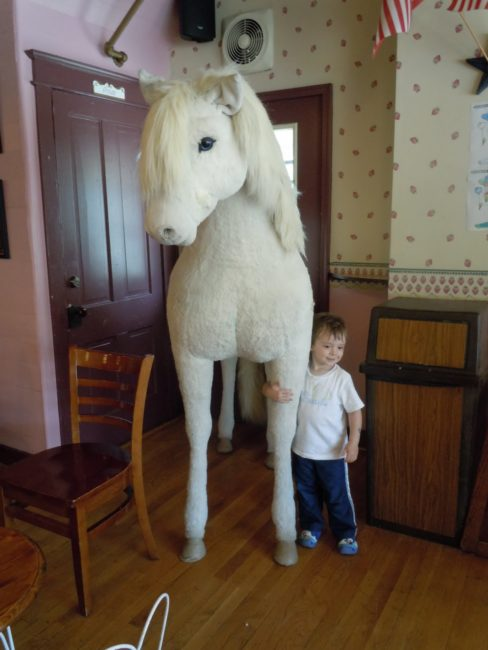 The Plush Horse - Toddling Around Chicagoland