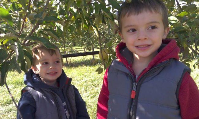 Royal Oak Farm - boys smiling - Toddling Around Chicagoland