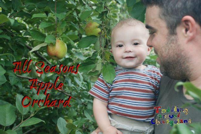 All Seasons Apple Orchard - Toddling Around Chicagoland