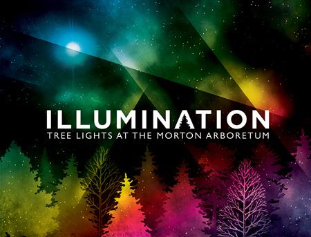 Illumination: Tree Lights at the Morton Arboretum - Toddling Around Chicagoland