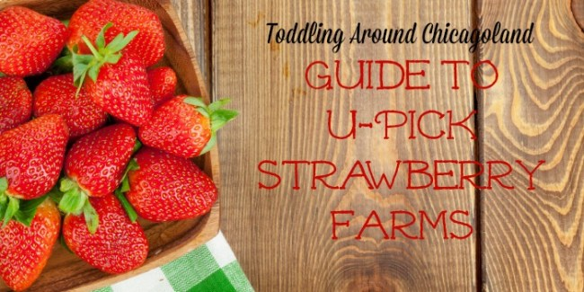 Guide to U-Pick Strawberry Farms 2015