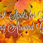 Best Spots for Leaf Peeping Near Chicago