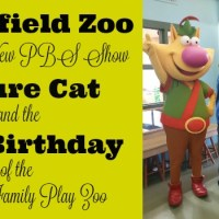 Brookfield Zoo Celebrates New PBS Show Nature Cat & the 15th Birthday of the Hamill Family Play Zoo