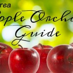 Chicago Area Apple Orchard Guide 2016