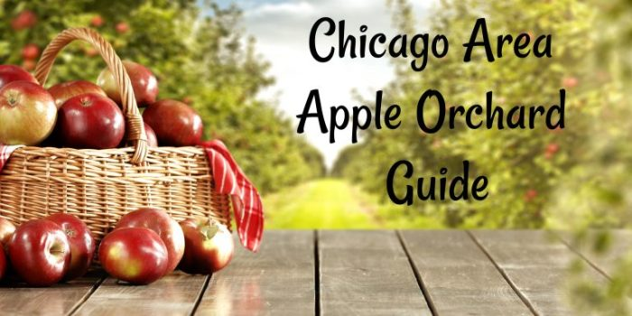 Chicago Area Apple Orchard Guide 2019