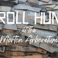 Troll Hunt at the Morton Arboretum
