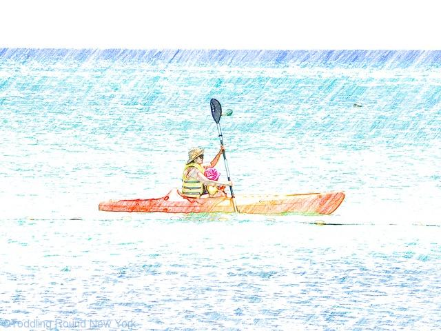 Cayman - Kimpton Seafire Hotel - A & B kayaking - 7 mile beach