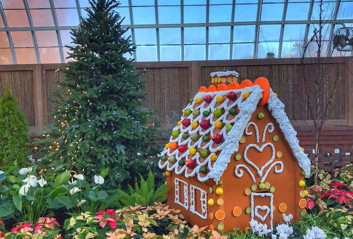 Pittsburgh Christmas Lights Phipps Toddling Traveler