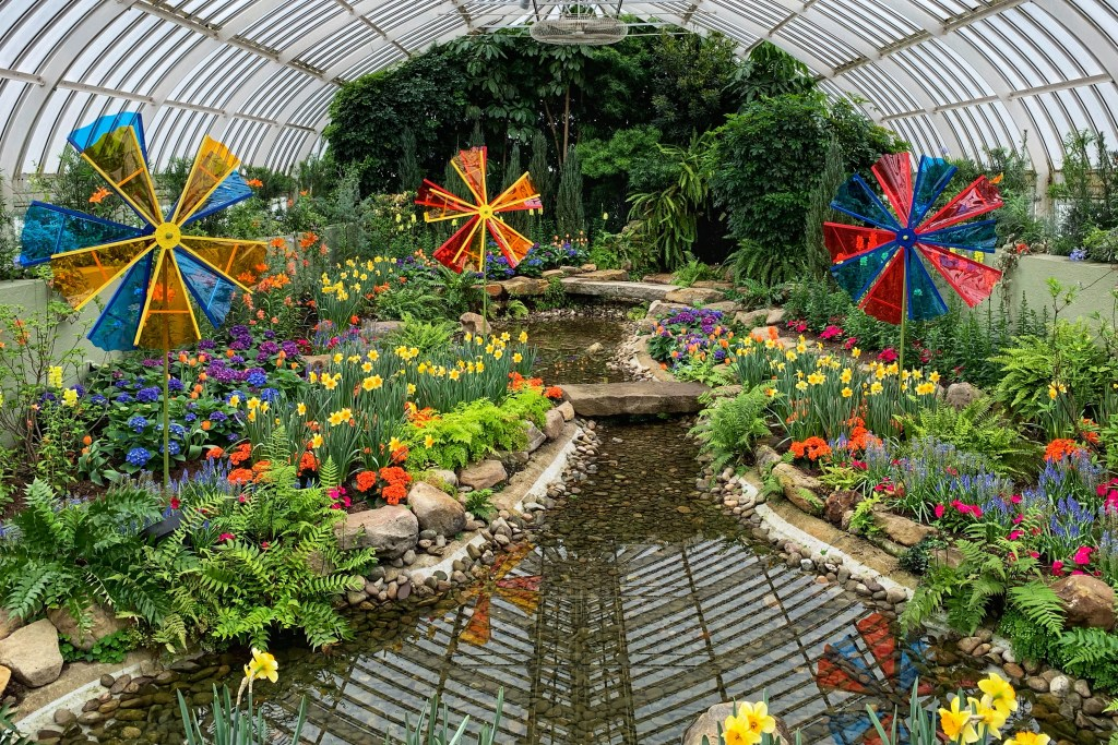 Phipps conservatory spring show