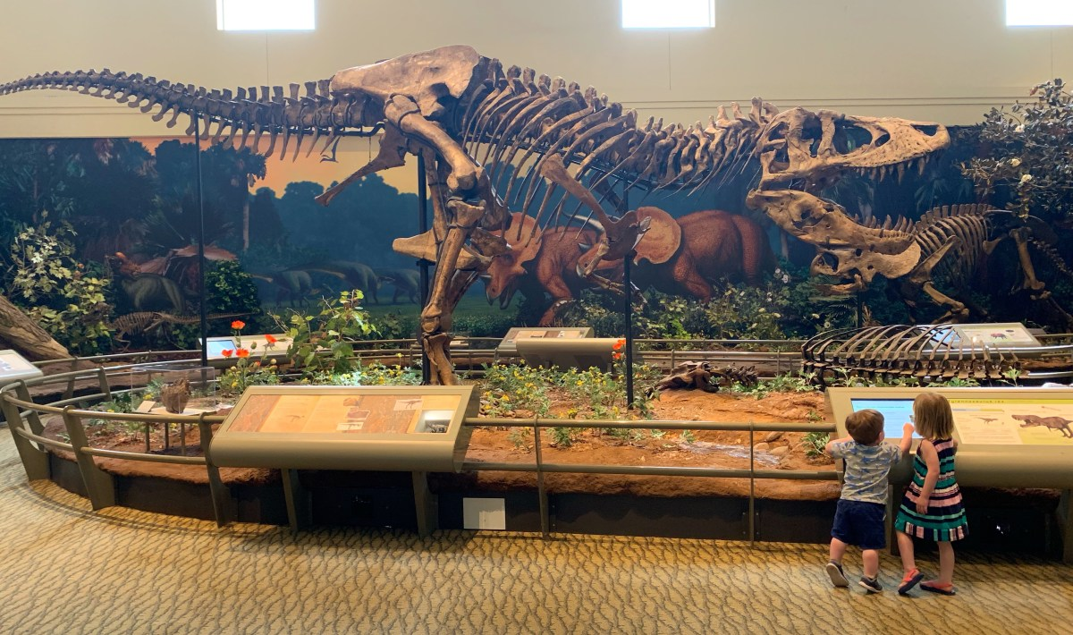Dinosaurs Carnegie Museum of Natural History Pittsburgh with a Toddler