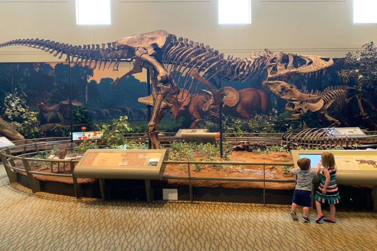 Dinosaurs Carnegie Museum of Natural History Pittsburgh with a Toddler Toddling Traveler
