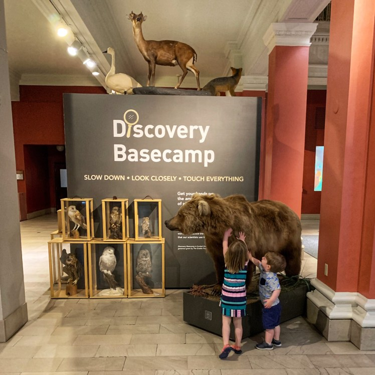 Discovery Base Camp Carnegie Museum of Natural History Things to do in Pittsburgh with a toddler