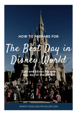 How to plan for one day in Disney
