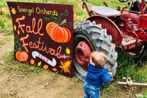 Soergels Orchard Fall Festival Toddling Traveler